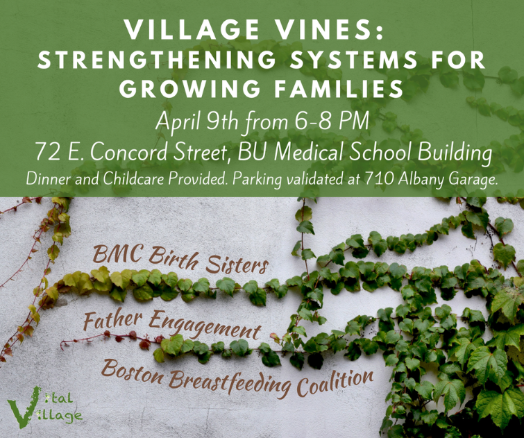 Village Vines: Strengthening Systems for Growing Families